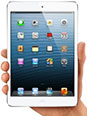 iPad mini 4 OR $400
