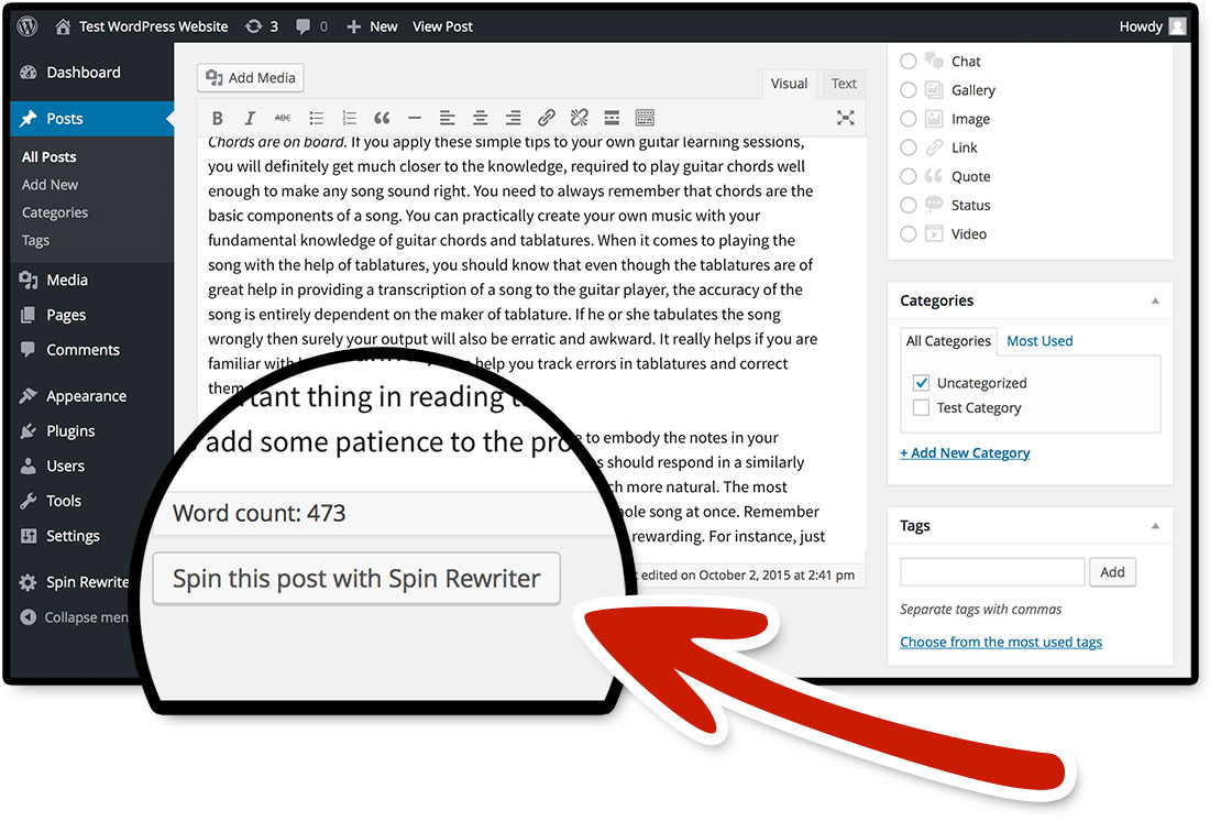 You can easily spin posts and pages from your WordPress admin panel!